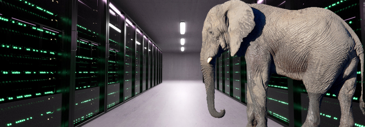Elephant in server room